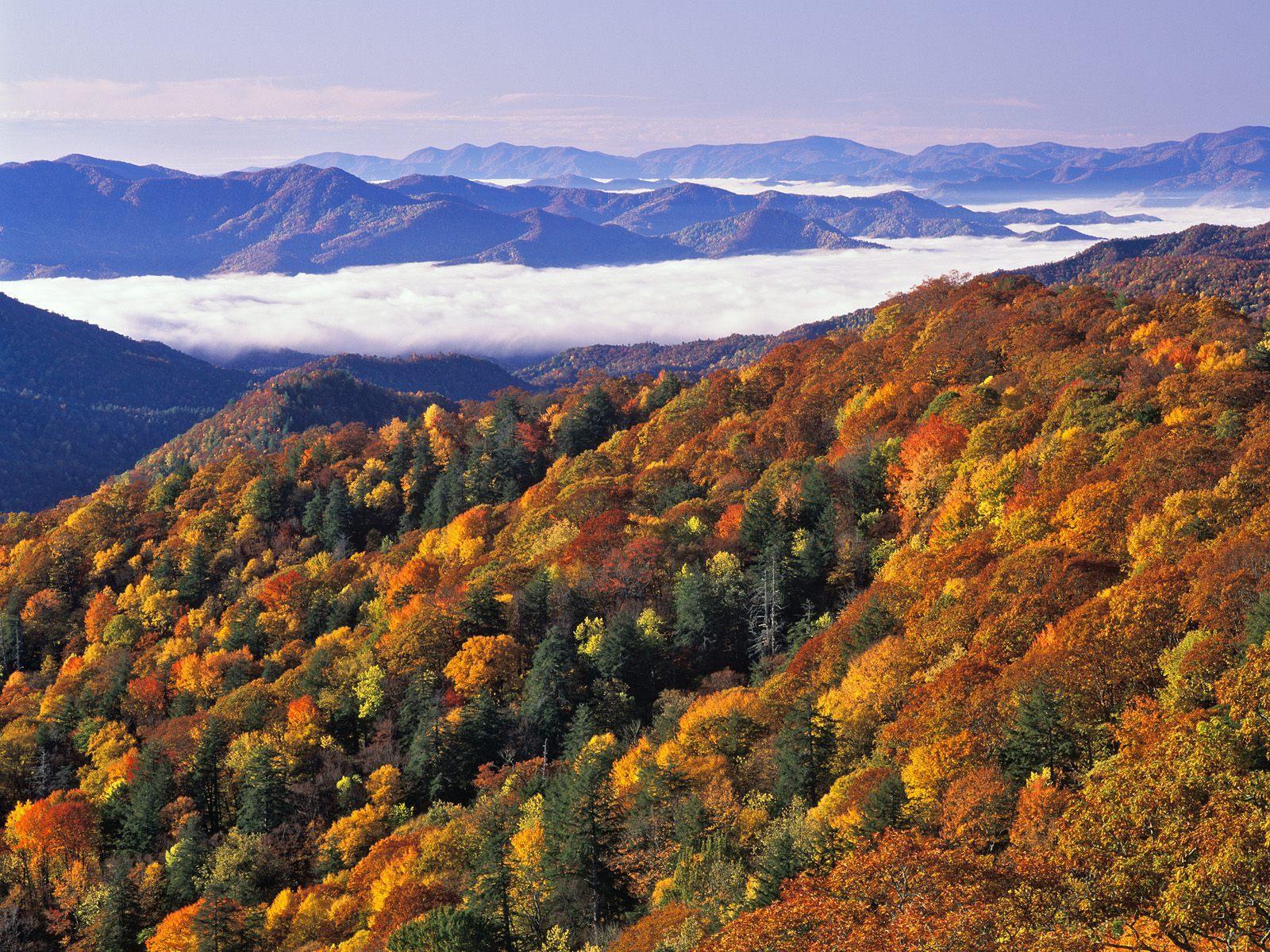 Smoky mountain autumn pictures