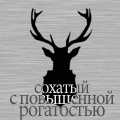My Deer