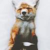 Lynx_of_war