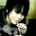 Kim Pi Chan
