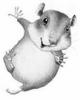el_hamster