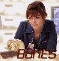 Bones Fest