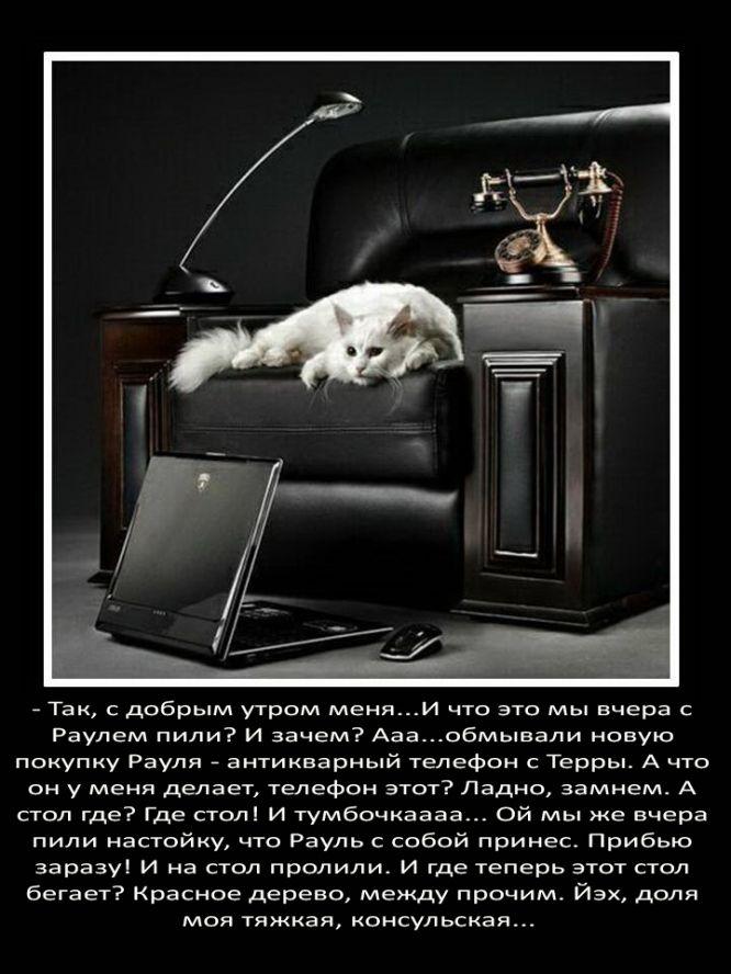http://static.diary.ru/userdir/3/0/7/2/3072095/78700285.jpg