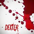 fandom Dexter 2013