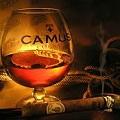 Camus.