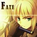 fandom Fate 2013