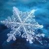 снежная в