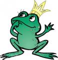 flyandfrog