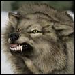 Индрик зверь