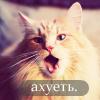 Vivien_ann