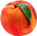 персикъ