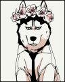 Nyanko-SENCEei