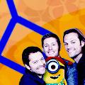 WTF Misha_s minions 2014