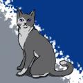 Eri Cat