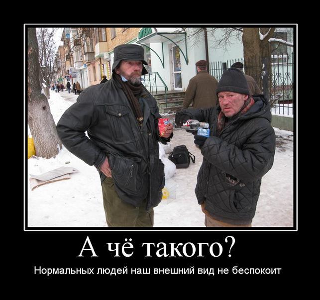 Рус демотиваторы на webinfo