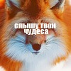 waffle fox