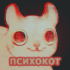 nastya__kot