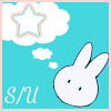 Spring fandom Seiya & Usagi
