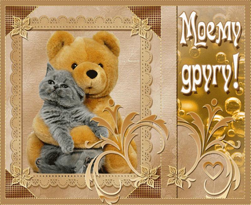 Фото для друзей открытка