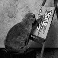 Маленький_Кот