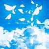 Крылатая Селена