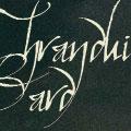 bard|thranduil