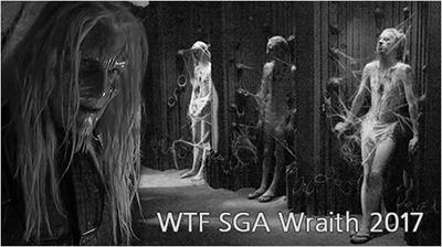 WTF SGA Wraith 2017
