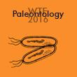 WTF Paleontology 2017