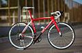 fandom Yowamushi Pedal 2015
