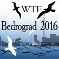WTF Bedrograd 2016
