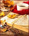 *Книжный*