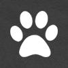 fandom Furry 2016