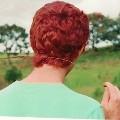 Рыжий скромник