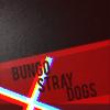 fandom Bungo Stray Dogs 2016