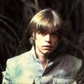 fandom Luke Skywalker 2016