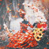Ведьма Осени