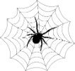 Арахнид