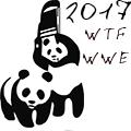 WTF WWE 2017