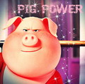 fandom PIGPOWER 2017