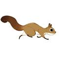 lazy_squirrel
