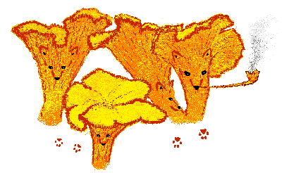 лисички