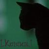 !.Кошка со скрипкой.!
