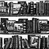 Литературные игры