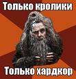 *Гостья*
