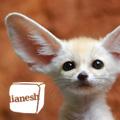 Lianesh