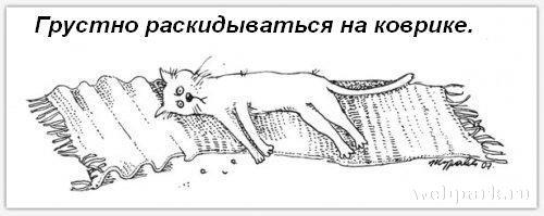 http://static.diary.ru/userdir/3/9/7/2/397265/64681098.jpg