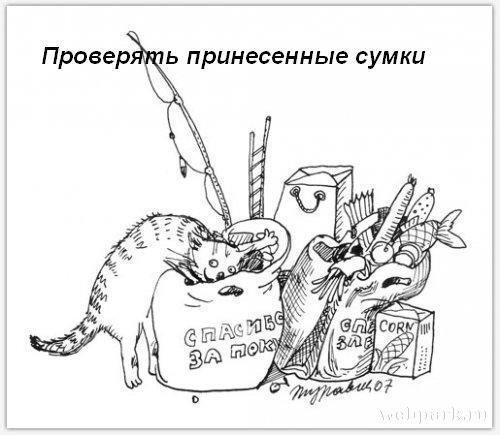 http://static.diary.ru/userdir/3/9/7/2/397265/64681221.jpg