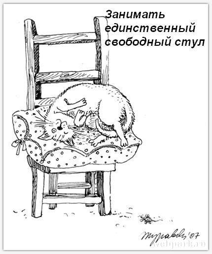http://static.diary.ru/userdir/3/9/7/2/397265/64681236.jpg