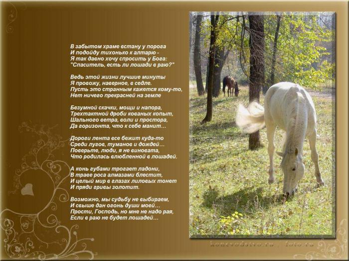 Стих к подарку лошадка 53