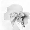 La Fleur Darion